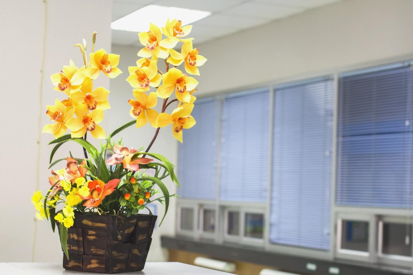 Kwiaty na roślinach pomagają pracownikom skuteczniej odprężać wzrok.