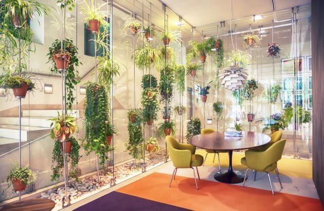 Rośliny żywe vs rośliny sztuczne
