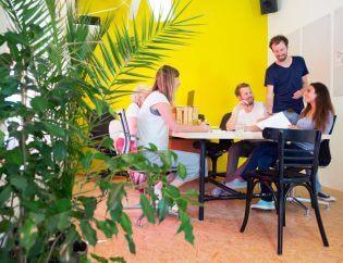 Rośliny biurowe – zieleń zwiększająca kreatywność
